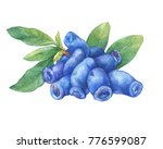 fresh blue berries and leaves... | Shutterstock . vector #776599087