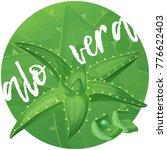 aloe vera plant illustration.... | Shutterstock .eps vector #776622403