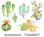 watercolor tropical cactus hand ... | Shutterstock . vector #776630017