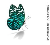 beautiful colorful butterfly... | Shutterstock . vector #776699887