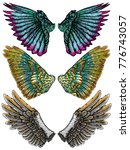colourful wings set. hand drawn ... | Shutterstock .eps vector #776743057
