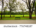 two benches stand in big park... | Shutterstock . vector #776748187