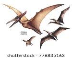 Watercolor Flying Pterodactyls...