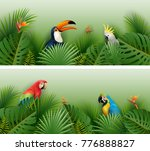 tropical plants leaves banner... | Shutterstock .eps vector #776888827