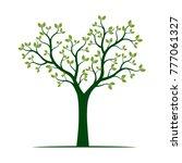 green spring tree. vector... | Shutterstock .eps vector #777061327