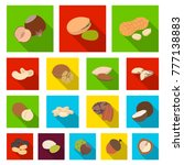 Different Kinds Of Nuts Flat...