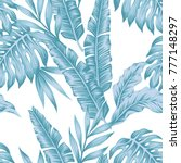 tropical leaves winter color... | Shutterstock .eps vector #777148297