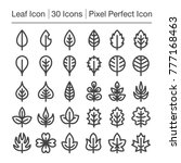 leaf line icon editable stroke... | Shutterstock .eps vector #777168463