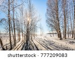 journey to the fairy tale.... | Shutterstock . vector #777209083