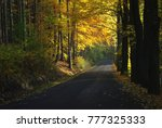 autumn abstract background with ... | Shutterstock . vector #777325333