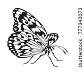 icon of butterfly silhouette on ... | Shutterstock .eps vector #777342073