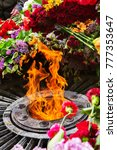 memorial to memory of unknown... | Shutterstock . vector #777353647