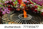 memorial to memory of unknown... | Shutterstock . vector #777353677