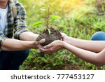 couple planting and watering a... | Shutterstock . vector #777453127