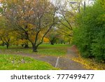 bicycle trail in the autumn... | Shutterstock . vector #777499477
