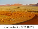 Red Sand Dunes And Yellow...