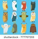 owls vector cartoon cute bird...   Shutterstock .eps vector #777707203
