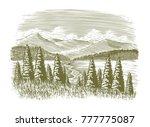 Woodcut Illustration Of A...