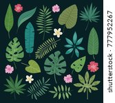 tropical leaves flowers vector... | Shutterstock .eps vector #777952267