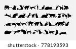 Stock vector silhouette of cats icons set vector illustration 778193593