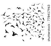seagulls black silhouette on... | Shutterstock . vector #778417963