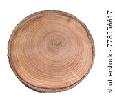 cross section of tree trunk... | Shutterstock . vector #778556617
