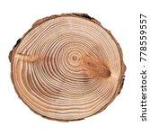 cross section of tree trunk... | Shutterstock . vector #778559557