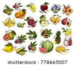 set of isolated fruit sketches. ... | Shutterstock .eps vector #778665007