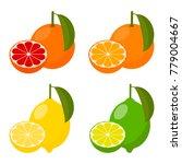 icons vector citrus fruits ...   Shutterstock .eps vector #779004667