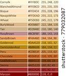 set og colors. shade of brown | Shutterstock .eps vector #779032087