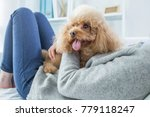 woman playing with cute dog | Shutterstock . vector #779118247
