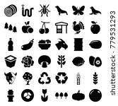 natural icons. set of 36... | Shutterstock .eps vector #779531293