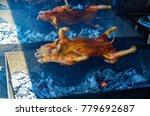 barbecued suckling pig ... | Shutterstock . vector #779692687