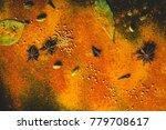 assorted spices on dark black... | Shutterstock . vector #779708617