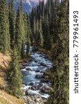 mountain river arashan flowing... | Shutterstock . vector #779961493