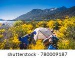 november 24  2017  camping at... | Shutterstock . vector #780009187