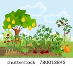 garden with different... | Shutterstock .eps vector #780013843