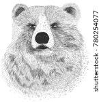 bear illustration for your t...   Shutterstock .eps vector #780254077