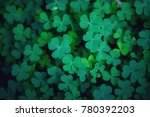 green background with three... | Shutterstock . vector #780392203