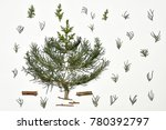 christmas tree on a white... | Shutterstock . vector #780392797