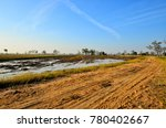 rural road in thailand it's a... | Shutterstock . vector #780402667