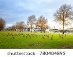 Geese At Tom Mccall Waterfront...