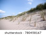 close up of lyme grass in...   Shutterstock . vector #780458167
