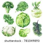 hand drawn raw food... | Shutterstock . vector #781049893