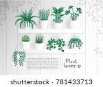 plant lover flat design house... | Shutterstock .eps vector #781433713