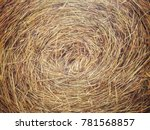 Many Rice Straw As Texture