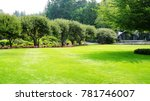beautiful trees and green grass ... | Shutterstock . vector #781746007
