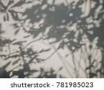 tree leaves shadow on wall... | Shutterstock . vector #781985023