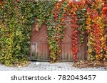 the facade of an old house with ... | Shutterstock . vector #782043457