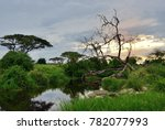 beautiful landscape with river... | Shutterstock . vector #782077993